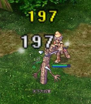20081015_syo-gun01.jpg