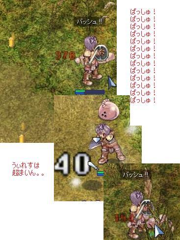 20081021_tensyoku_load08.jpg