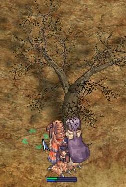 20081024_CS_Kari-06.jpg