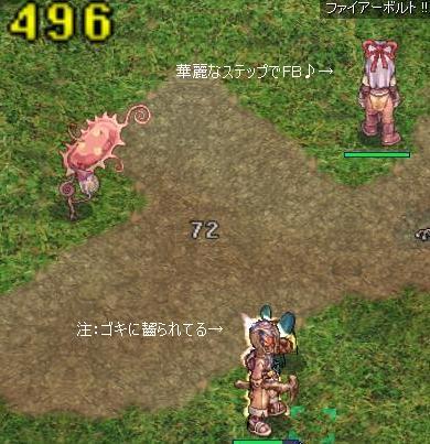 20081025_s-nobi-kari01.jpg
