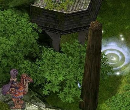 20081030_CS_Kari-12.jpg