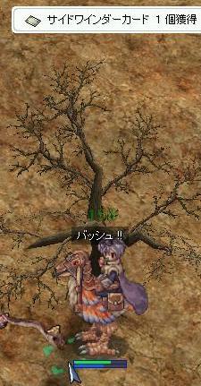 20081103_CS_Kari-26.jpg