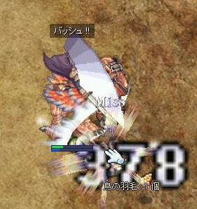 20081104_CS_Kari-30.jpg