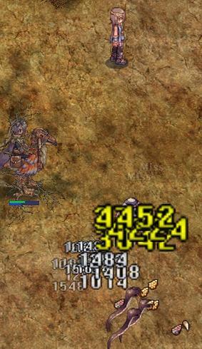 20081111_CS_Kari-41.jpg