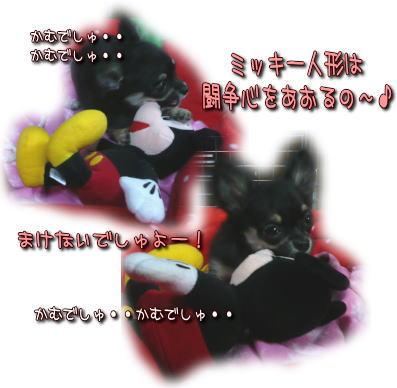 image000102.jpg