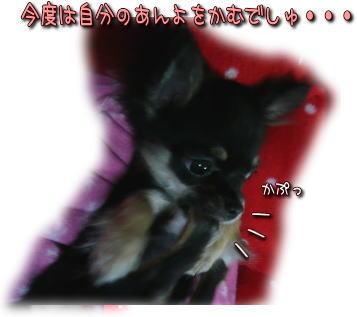 image000104.jpg