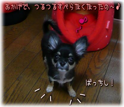 image000672.jpg