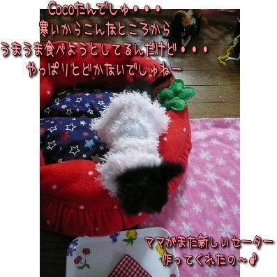 image000691.jpg