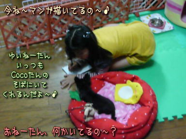 image000695.jpg