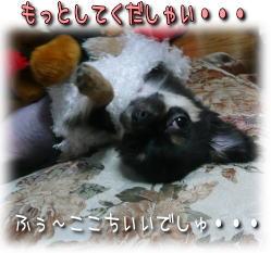 image000853.jpg