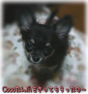 image000854.jpg
