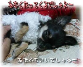 image000858.jpg