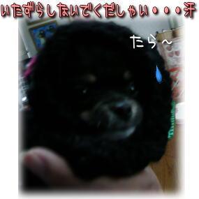 image000867.jpg