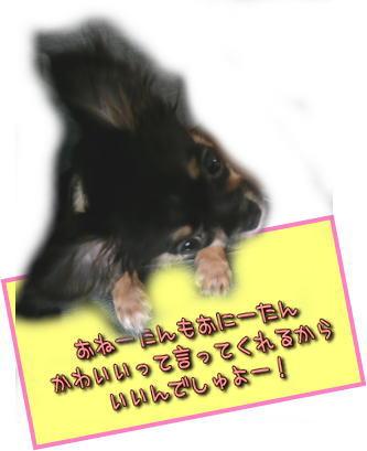 image000887.jpg