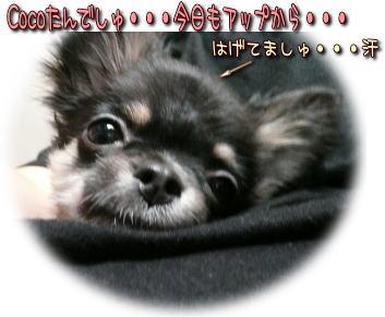 image000908.jpg