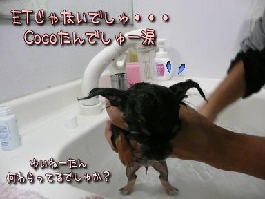 image000924.jpg
