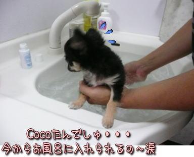 image000929.jpg