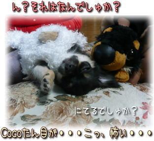 image000952.jpg