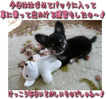 image000971.jpg