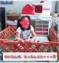 image014.jpg