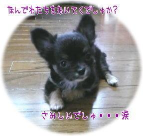image054.jpg
