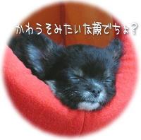 image060.jpg