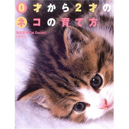 0歳から2歳までの猫の飼い方