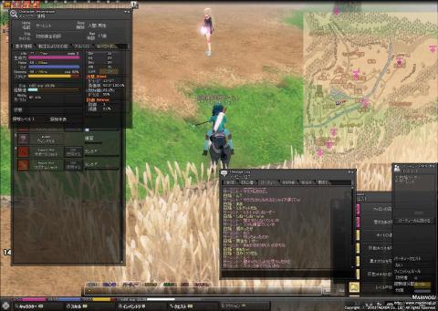 mabinogi_2009_06_30_003.jpg