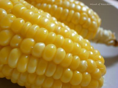 0806_corn.jpg