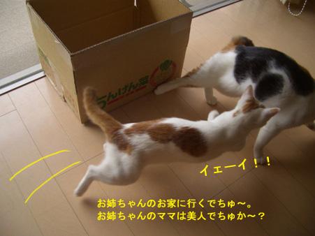 行きます行きま~す!!