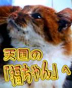 秋田発 天国の「福ちゃん」へ