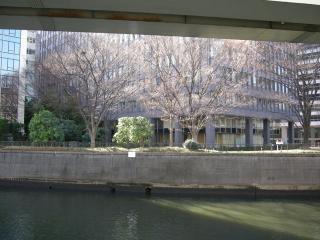 201201日本橋散歩11
