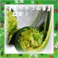 食べトコ山菜