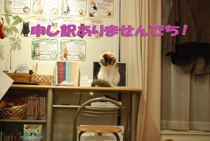 0216-(28)2_20110420070805.jpg