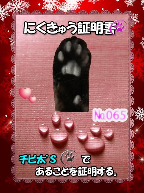 20110328204706924.jpg