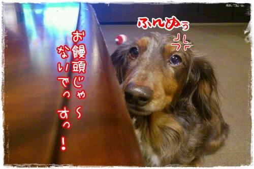 0115_2_20120115192200.jpg