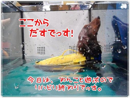 0120_3_20120120105549.jpg
