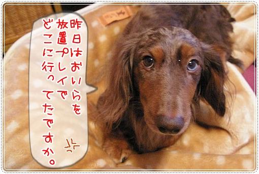 0201_1_20120201101013.jpg