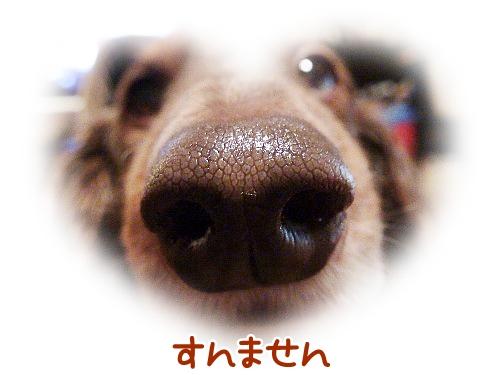 0208_3.jpg