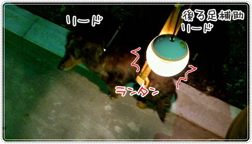 0307_02.jpg