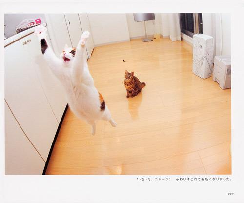 tachiyomi_31975815_4.jpg