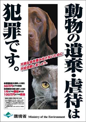 poster-Noikigyakutai.jpg