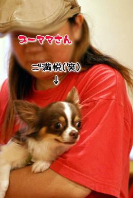 コピー ~ DSC09299