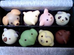 アニマルチョコレート