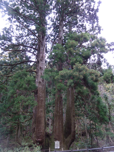 okinoshima023.jpg