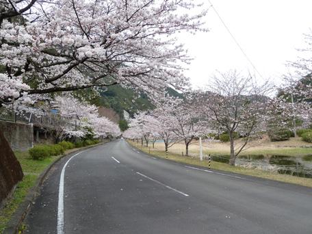 shimokitayamamura001.jpg