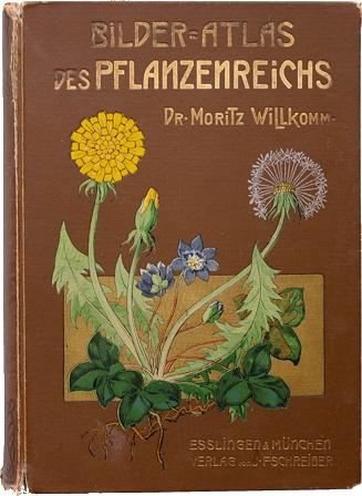 botanique-image.jpg