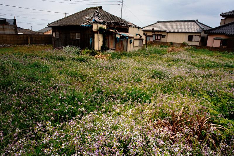 長崎町廃屋