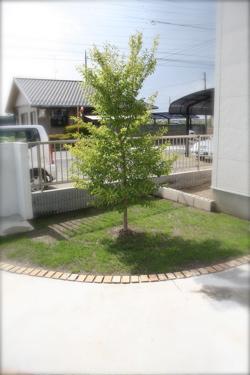 IMG_0518-1.jpg