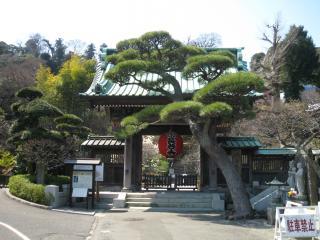 長谷寺へいってきましたー